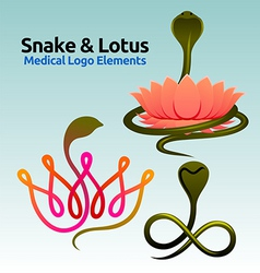 Snake and lotus vector