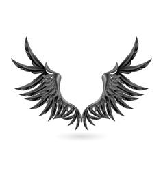 Black wings vector image