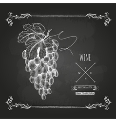Hand drawn chalk drawing wine background vector image vector image