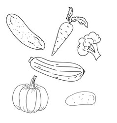 Vegetables outline hand drawing vector