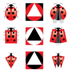 Evolution of ladybug vector
