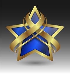 Elegant metallic star embleme with embellishment vector image