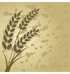 Ear of wheat in the beige background vector