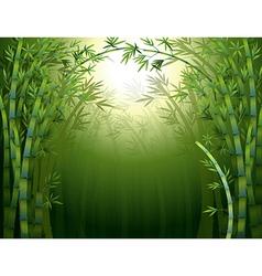A bamboo rainforest vector
