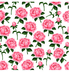 Seamless pattern of spring roses flowers vector