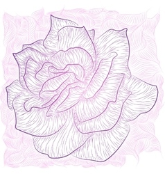 Rose outline vector