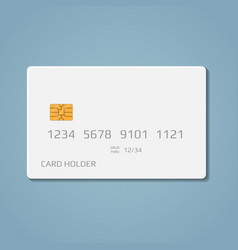 bank credit debit card vector image