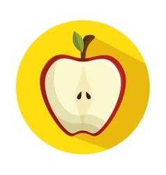 half apple delicious fruit healthy vector image