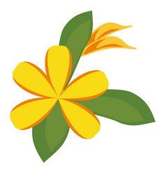 Plumeria flower decoration icon vector