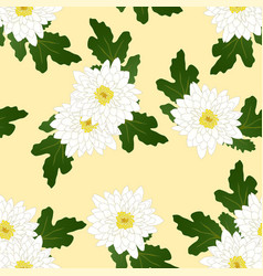 White chrysanthemum on yellow ivory background vector