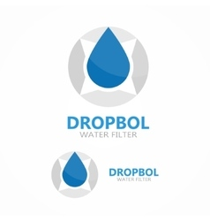 Logo compass with drop of water vector
