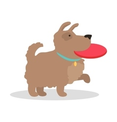 Dog with frisbee in flat design vector