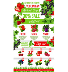 poster of fresh garden berries market sale vector image vector image