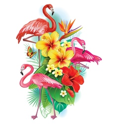 Arrangement from tropical flowers and Flamingoes vector image vector image