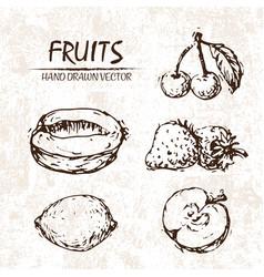 Digital detailed fruit hand drawn vector