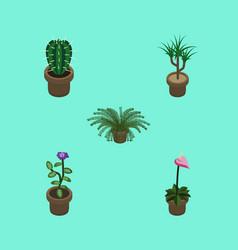 Isometric flower set of houseplant peyote plant vector