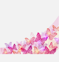 Pink and red butterflies vector