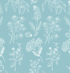 Seamless pattern with herbs on blue background vector
