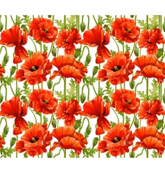 Big seamless pattern of red poppies realistic vector image vector image