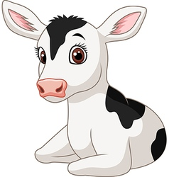 Cute baby cow isolated on white background vector image vector image