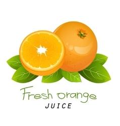 Orange slice fruit icon set Composition vector image