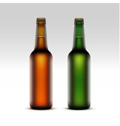 Set of Glass Brown Green Frosty Bottles with Drops vector image vector image