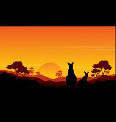 Silhouette of kangaroo st sunset scenery vector