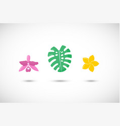 tropical plants flat icons set vector image vector image