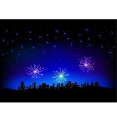 Firework in sky on city scape vector