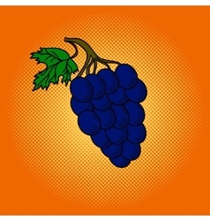 Grapes pop art vector image vector image