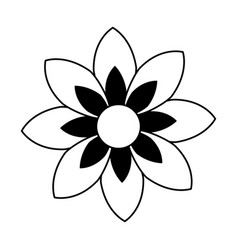 Monochrome contour of figure flower icon floral vector