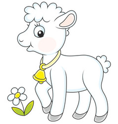 small white lamb vector image vector image
