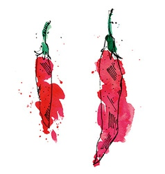 Watercolor of peppers vector