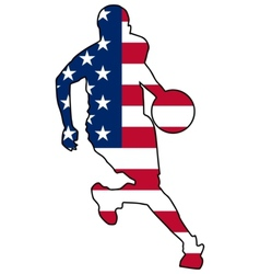 basketball colors of United States vector image vector image
