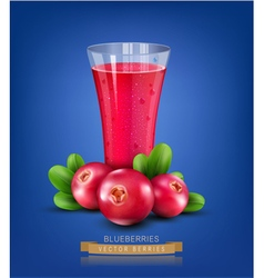 Glass cup with juice of cranberries on a blue back vector