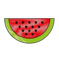 slice of sweet watermelon vector image