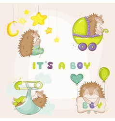 Baby hedgehog set - for baby shower vector
