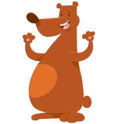 Bear wild animal character vector