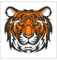 Tigers face of a tiger head vector