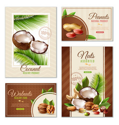 nuts poster banner set vector image