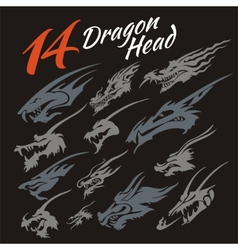 Heads of the dragon vector