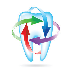 Fluoride tooth protection vector