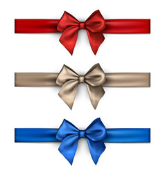 Colorful satin bows isolated on white vector