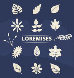 nature elements collection - leaves and grass vector image vector image