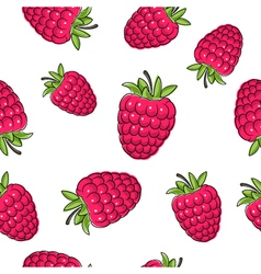 Seamless pattern of raspberries vector