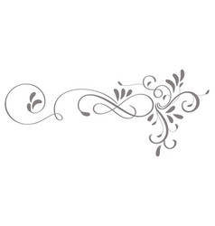 Calligraphy flourish art of vintage decorative vector