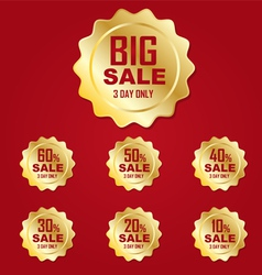 Icon gold big sale label or tag vector