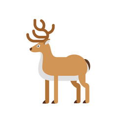 flat style of deer vector image vector image