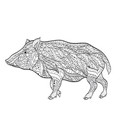 wild boar coloring for adults vector image