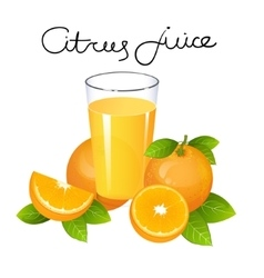 Orange juice with fruit slice  composition vector